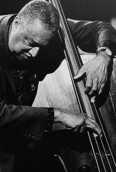 {{ metadata.description }} Jazz Artists, Jazz Musicians, Music Artists, Jazz Cat, Musician Photography, Cool Jazz, Double Bass, Jazz Blues, My Favorite Music