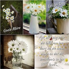 Morning Messages, Morning Quotes, Afrikaanse Quotes, Goeie More, Qoutes, Table Decorations, Deep Thoughts, Flowers, Advice