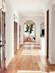 hallway inspo big plant wood floor bright natural light arches arch wooden wood french door dream house