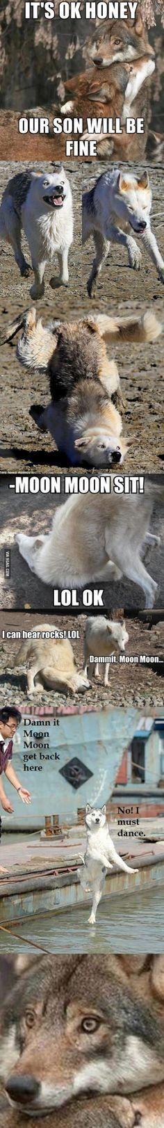 Dammit Moon Moon!>>>> No no no no it's ....GAMMIT MOON MOON!!!!!!>>> YASSSS>>>>>>MOON MOON!!!!!!