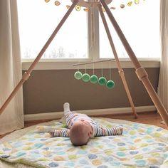 Montessori Toys for Baby Learning & Development Montessori Toddler, Montessori Activities, Toddler Toys, Baby Toys, Baby Baby, Violin Lessons, Baby Bouncer, Bouncers, Developmental Toys
