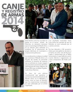 Canje y registro de armas 2014