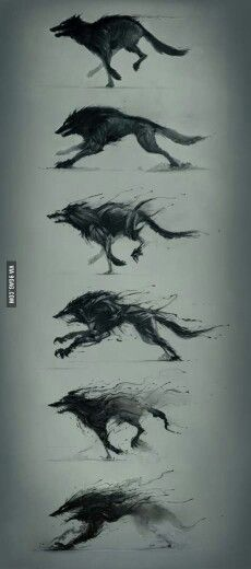 Awesome wolf drawings.
