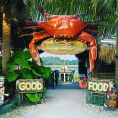 Guess who's filming at The Crab Shack this Thursday March 8th?  The Travel Channel!  We will be welcoming the Travel Channel to The Crab Shack between 1pm-2pm to film one of their shows.  Join us for lunch on Thursday and be in the background or maybe even interviewed! We recommend arriving between 12:30-12:45pm.  See you Thursday!  #travelchannel #crabshack #tybee #tybeeisland