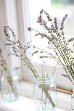 lavender on the window sill. Window Dressings, Window Sill, Bridesmaid Bouquet, Colorful Decor, Decoration, Eye Candy, Wedding Flowers, Picnic, Centerpieces