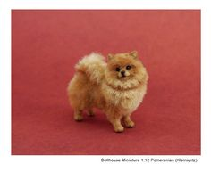 Little Red Pom sculpture by Kerri Pajutee *1:12 dollhouse miniature scale*