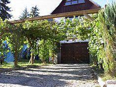 Beautiful Pergola Wein