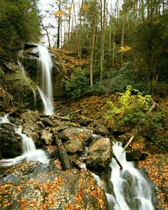 Helen, Georgia -- Anna Ruby Falls. I would love to vacation and take pics to paint and draw.
