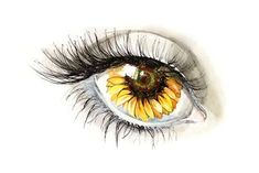 Learn To Draw Faces Drawing Tips sunflower drawing Sunflower Sketches, Sunflower Drawing, Sunflower Art, Bee Drawing, Drawing Tips, Learn Drawing, Drawing Art, Realistic Eye Drawing, Easy Eye Drawing