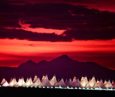 Again, nature gives us our inspiration for some of our most lovely architecture!  Denver International Airport