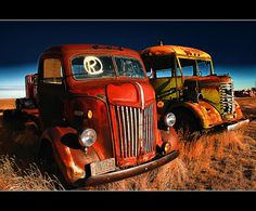 junkyard trucks holding the key parts to restoration projects
