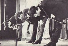The Beatles bowing after a performance.