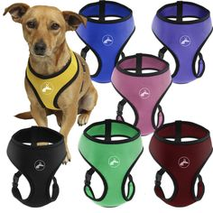 OxGord Dog Collar Harness Cat Pet Safe Control Easy Soft Walking no Pull Tug free - Service Vehicle Seatbelt Safety Strap Vest Leash for small to large dogs - Airline Airport approved >>> Details can be found by clicking on the image.