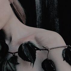 ☆彡 follow linzmorgans for more! A Court Of Wings And Ruin, A Court Of Mist And Fury, Cornelia Hale, Greek Gods And Goddesses, Greek Mythology, Dark Fairytale, Holly Black, High Fantasy, Persephone