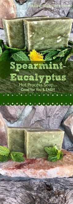 Need to wake up and be alert fast! This soap will get you there! Here's my recipe for Spearmint-Frankincense-Eucalyptus natural, handmade, hot process soap! Find out how to make beautiful hot process soap that will wake you up! Yummy, cleansing, and Diy Savon, Savon Soap, Soap Making Recipes, Homemade Soap Recipes, Homemade Paint, Green Soap, Soap Making Supplies, Lotion Bars, Soap Molds