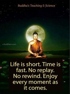 great quotes of wisdom Buddha Quotes Life, Buddha Quotes Inspirational, Buddha Wisdom, Zen Quotes, Buddhist Quotes, Wise Quotes, Inspiring Quotes About Life, Spiritual Quotes, Happiness Quotes