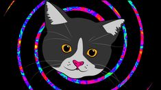 cats on drugs psychedelic gif Trippy Cat, Acid Trip, Edm Festival, Wide Awake, Baby Art, Visionary Art, Cat Gif, Psychedelic, Surrealism