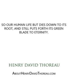 """""""So our human life but dies down to its root, and still puts forth its green blade to eternity."""" - Henry David Thoreau http://abouthenrydavidthoreau.com/?p=299"""