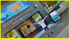 Kids visit The Norwegian Aquarium Ålesund - Atlanterhavsparken Alesund, Play Doh, Norway, Kids Toys, Aquarium, Eggs, Disney, Childhood Toys, Goldfish Bowl