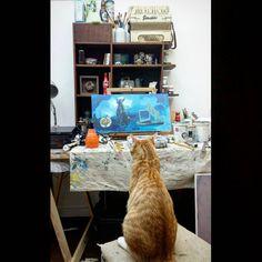 Start The Day, Cat Life, Studio, Cats, Instagram, Gatos, Studios, Cat, Kitty