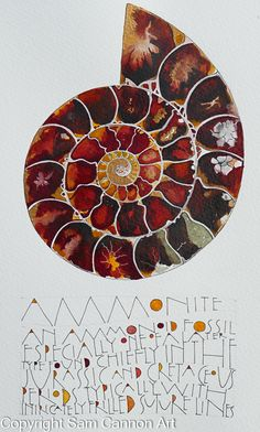 2016 originals – part 1 « Sam Cannon Art Art Journal Inspiration, Art Inspo, Sam Cannon, Nautilus, Illustration, Shell Art, Art Journal Pages, Silk Painting, Art Plastique