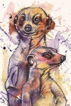 Painting commission of two Meerkats. Mixed media - watercolour and fineliner. Love the cheeky character in these guy's faces!! For more of my work and information on commissions please visit : www.toriratcliffe-art.co.uk or follow me on facebook, just search Tori Ratcliffe Art!