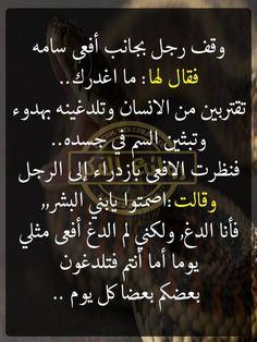 Best Quotes, Funny Quotes, So True, Arabic Quotes, Quran, Qoutes, Prayers, Self, Advice