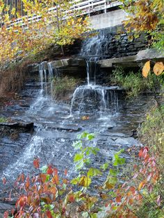 Indiana State Park