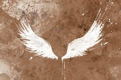 White Wings modern wall art 12x18 art print by papermoth on Etsy. $35.00, via Etsy.