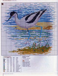 Ponto cruz da Lzinha: Aves