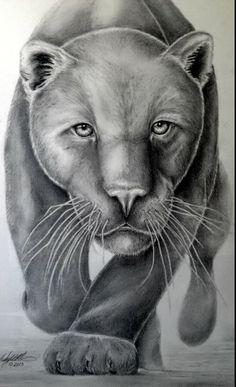 black panther drawing - Google-søk