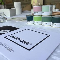 Pantone Paint, Color Mixing, Colours, Painting, Painting Art, Paintings, Painted Canvas, Drawings