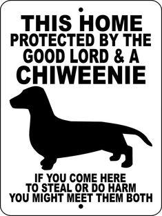 Chiweenie Dog Sign 9x12 ALUMINUMGLCHIW