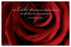 Mein Papa sagt...   Die Liebe will nichts von dem anderen, sie will alles für den anderen.  Dietrich Bonhoeffer    Weisheiten und Zitate TÄGLICH NEU auf www.MeinPapasagt.de