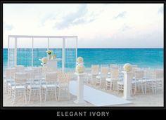 Elegant Ivory- I'm going to say this one creates a wonderful romantic mood set against the turquoise waters of the Caribbean Sea. Only the bride will stand out beyond the varying shades of white. Brilliant white and brilliantly done!