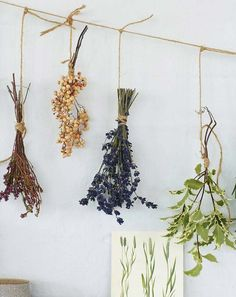 How To Dry Wedding Flowers Spring - wedding bouquet preservation: 7 ways to preserve your Dried Flower Bouquet, Dried Flowers, Diy Hacks, Wedding Bouquets, Wedding Flowers, Dried Flower Arrangements, Dry Plants, How To Preserve Flowers, How To Dry Flowers