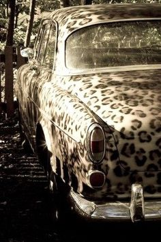 Leopard Print Car, pretty badass in my opinion, andd what looks like a chevy belair? Pin Up, Oldschool, Cheetah Print, Leopard Prints, My Favorite Color, Dream Cars, Giraffe, Jaguar, At Least