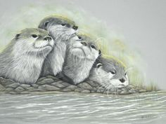 Curiosity- Otters © Fiona Bárcenas all rights reserved