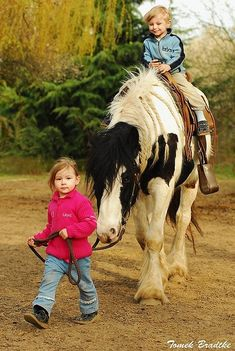 A horse that you can do just about anything with . I see her little friends have braided her mane!- Pixdaus.  http://pixdaus.com/a-horse-that-you-can-do-just-about-anything-animals-animal-f/items/view/569492/#