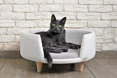 Nook is a modern, hand-made cat and small dog furniture. Ideal for rest and fun. Created for love of animals and beautiful interiors. The furniture is upholstered with a clean, abrasion-resistant and breathable fabric that meets the standards of health a Pet Beds, Dog Bed, Pet Hotel, Dog Furniture, Cat Room, Cat Decor, Diy Stuffed Animals, Cat Gifts, Crazy Cats