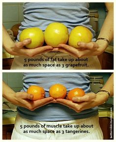 Fat and muscle compared to fruits