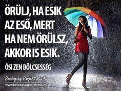 Örülj, ha esik az eső, mert ha nem örülsz, akkor is esik. - Ősi zen bölcsesség