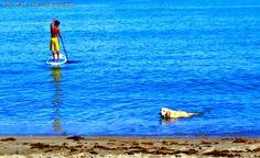Sole Escape: La Union - Soul Surfing with Travel Guide
