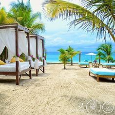 A little piece of #paradise to start your morning.. #westbaybeach #roatan