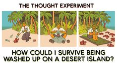 How could I survive being washed up on a desert island?