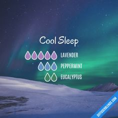 Cool Sleep - Essential Oil Diffuser Blend