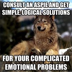 Consult an Aspie and get simple, logical solutions for your complicated emotional problems