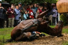 Anna Warnecke of Germany takes a huge fall at the 25th jump as her horse Twinkle Bee lands on her during the cross country event on day three of The Land Rover Burghley Horse Trials on September 6, 2008 in Stamford, United Kingdom.