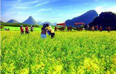 No.4-Qujing (Northeast Yunnan) | Top 9 Destinations Of Yunnan During Spring Festival