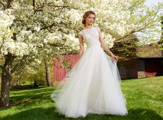 Ivory Tulle bridal ball gown with beaded illusion neckline and capped sleeves, lace sweetheart underlay, sheer back with encrusted belt at natural waist and chapel train. Bridal Gowns, Wedding Dresses by Tara Keely - JLM Couture - Bridal Style tk2552 by JLM Couture, Inc.